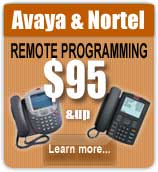 Avaya Special - phones Garland